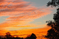 Woodford - 'Sunset 1' (QLD)