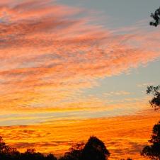 Woodford - 'Sunset 1' (QLD)