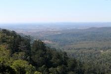 Bunya Mountains (Qld)