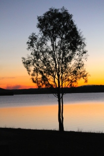 Lake Wivenhoe (Qld)