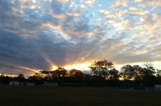 Woodford - 'Sunset 2' (Qld)
