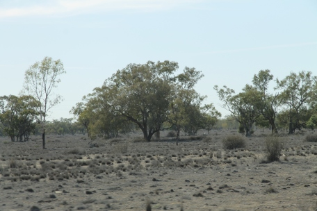 Walgett (NSW) drought conditions