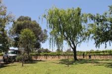 Red Earth Estate Winery Dubbo (NSW)