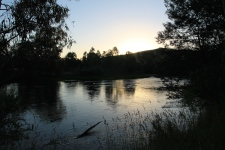 Brookes Cutting Reserve - Goulburn River (Vic)