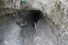 Brookes Cutting Reserve - Wombat Burrow (Vic)
