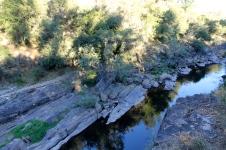 Bright - Canyon Walk (Vic)
