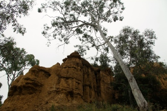 Omeo - Oriental Claims (Vic)