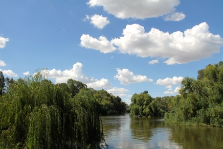 Murrumbidgee River (NSW)