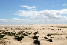 Stockton Beach Sand Dunes (NSW)