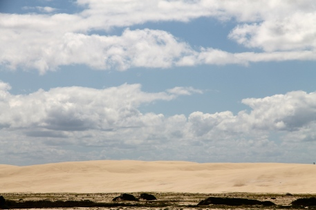 Stockton Beach Sand Dunes (NSW)