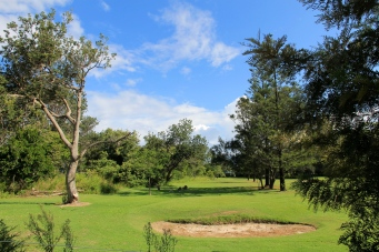 Darlington Beach Holiday Park - Golf Course (NSW)
