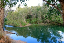 Gregory River (Qld)