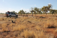 Camooweal National Park (Qld)