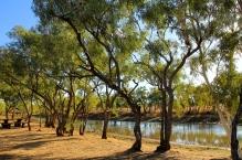 Camooweal - Nowranie Waterhole (Qld)