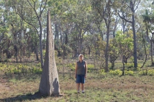 Litchfield NP - Magnetic Termite Mound (NT)