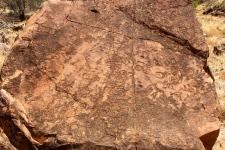 N'Dhala Gorge - Petroglyphs (NT)