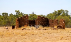 Ambalindum Station - Historic Shearing Shed (NT)