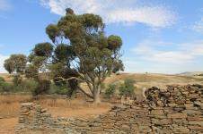 Hampton Township Ruins (SA)