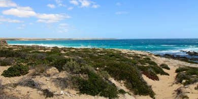 Yorke Peninsula - Corny Point (SA)