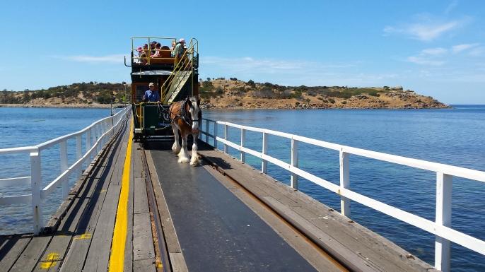 Fleurieu Peninsula - Victor Harbor Causeway (SA)