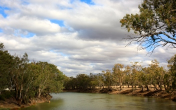 Piangil - Murray River (Vic)