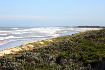 Nelson - Discovery Bay Coastal Park (SA)