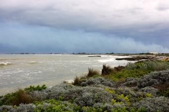 Riddoch Bay (SA)