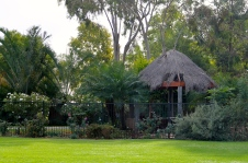 Bourke - Kidmans Camp - A Green Oasis (NSW)
