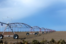 Hay - Self Propelled Irrigation Machine (NSW)
