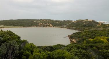 Beachport - Pool Of Siloam - Bird Spotting (SA)
