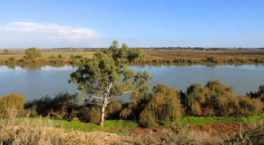Tailem Bend - Murray River (SA)