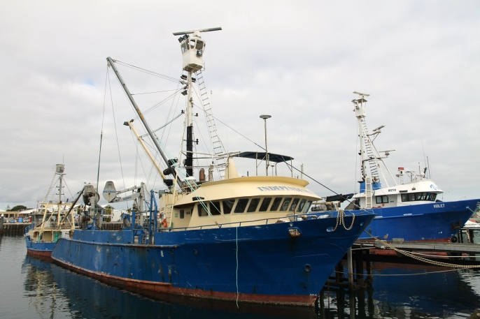 Port Lincoln - Tuna Fishing Vessels (SA)