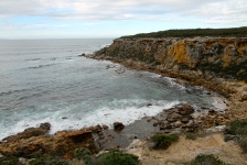 Whalers Way - Pelamis Point (SA)