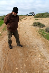 Cape Bauer Loop Drive - Searching For Fossilised Weevil Cocoons (SA)
