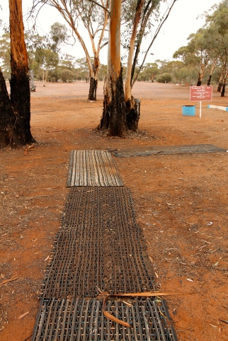 "Kambalda - Nullarbor Links Golf Course - ""Laying Out The Welcome Mats"" (WA)"