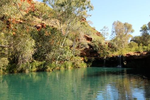 Karijini National Park - Dales Gorge - Fern Pool (WA)