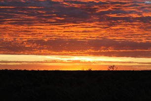 Mandora Station - Bush Campsite Sunrise (WA)
