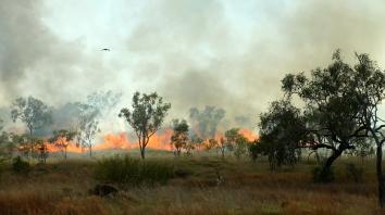 Purnululu National Park - Bushfires (WA)