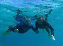 Ningaloo Whale Shark Tour (WA)