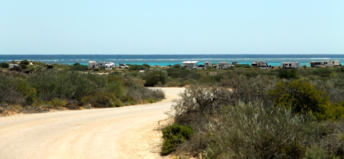 Cape Range National Park - Osprey Campground (WA)