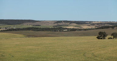 Northhampton Area - Wheat Country (WA)