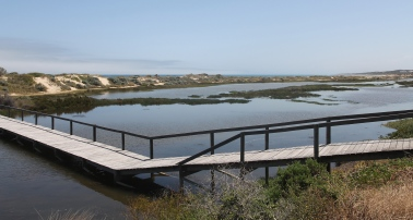 Dongara - Irwin River Estuary and Boardwalk (WA)