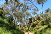 Stockyard Gully Cave Surrounds (WA)