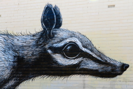Fremantle Art Trail - The Numbat - Ghent Belgium (WA)