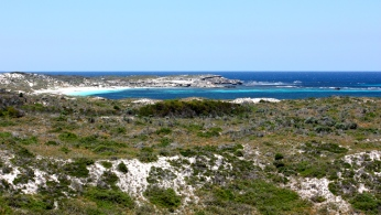 Rottnest Island (WA)