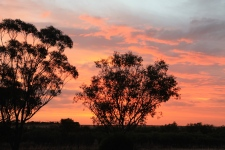 Kooma View Homestead - Sunset 1 (SA)