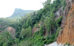 Cunninghams Gap (QLD)