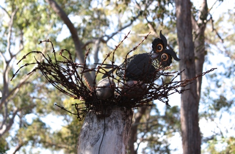 'Wired Owl' - Iron Ridge Park (Qld)