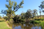 Widgee - Station Creek, Marg McIntosh Park (Qld)