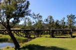 Widgee - Inky McIntosh Bridge Over Station Creek, Marg McIntosh Park (Qld)